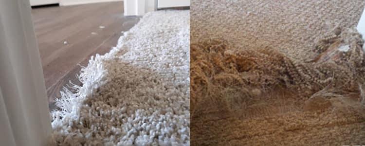 Best Carpet Repair North Hobart