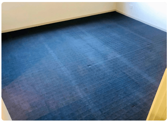 Same Day Carpet cleaning North Hobart